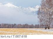 Купить «Тункинская долина зимой. Березы на скошенном поле на фоне заснеженных гор в тумане», фото № 7007618, снято 30 октября 2011 г. (c) Виктория Катьянова / Фотобанк Лори