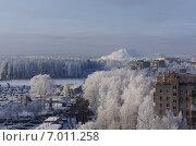 Снежное утро в Балашихе (2015 год). Стоковое фото, фотограф Шайкина Наталья / Фотобанк Лори