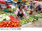 Купить «Женщина продает овощи на китайском рынке в городке Яншо, Китай», фото № 7013486, снято 15 мая 2013 г. (c) Николай Винокуров / Фотобанк Лори