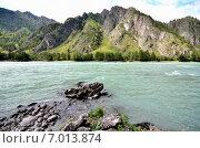 Купить «Река Катунь, Алтайский край, Россия», фото № 7013874, снято 9 августа 2014 г. (c) Александр Карпенко / Фотобанк Лори