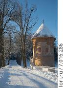 Купить «Зимний день у Пиль-башни. Павловский парк», фото № 7016286, снято 9 февраля 2015 г. (c) Виктор Карасев / Фотобанк Лори