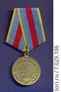 Медаль «За освобождение Варшавы» Стоковое фото, фотограф Константин Болотников / Фотобанк Лори