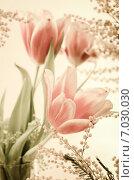 Купить «Весенний букет с мимозами и тюльпанами. Тонирование», фото № 7030030, снято 9 марта 2013 г. (c) Игорь Соколов / Фотобанк Лори