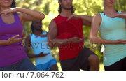 Купить «In high quality format fitness group doing tai chi in park », видеоролик № 7064762, снято 22 августа 2018 г. (c) Wavebreak Media / Фотобанк Лори
