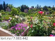 Сады  Альгамбры (2014 год). Стоковое фото, фотограф Марат Лялин / Фотобанк Лори