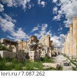 Купить «Римские руины в иорданском городе Джераш (в древности Гераса), Иордания», фото № 7087262, снято 15 июня 2013 г. (c) Владимир Журавлев / Фотобанк Лори
