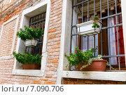 Купить «Зарешеченное окно с цветами на подоконнике. Венеция. Италия», фото № 7090706, снято 4 ноября 2013 г. (c) Евгений Ткачёв / Фотобанк Лори