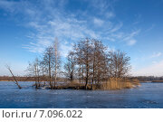 Остров посреди замёрзшего озера. Стоковое фото, фотограф Андрей Соколов / Фотобанк Лори