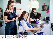 Купить «Парикмахер стрижет клиентку», фото № 7099606, снято 21 мая 2014 г. (c) Наталья Давыдова / Фотобанк Лори