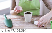 Купить «close up of woman sowing seeds to soil in pot», видеоролик № 7108394, снято 5 марта 2015 г. (c) Syda Productions / Фотобанк Лори