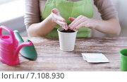 Купить «close up of woman sowing seeds to soil in pot», видеоролик № 7108930, снято 5 марта 2015 г. (c) Syda Productions / Фотобанк Лори
