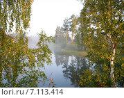 Вид на озеро сквозь листву берез. Стоковое фото, фотограф Геннадий Георгевич Руденко / Фотобанк Лори