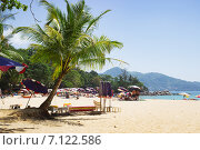 Купить «Легкая тень под пальмой на песчаном пляже», фото № 7122586, снято 3 марта 2015 г. (c) Александр Романов / Фотобанк Лори