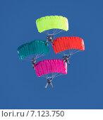 Купить «Четыре парашютиста, купольная акробатика», фото № 7123750, снято 14 марта 2015 г. (c) Владимир Мельников / Фотобанк Лори