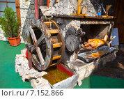 Купить «Вертел с водяной мельницей», фото № 7152866, снято 4 августа 2014 г. (c) Старостин Сергей / Фотобанк Лори