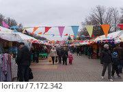 Ярмарка на площади г.Батайск Ростовской области (2015 год). Редакционное фото, фотограф Ольга Алексеенко / Фотобанк Лори