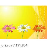 Цветочный фон оформление. Стоковая иллюстрация, иллюстратор Попова Евгения / Фотобанк Лори