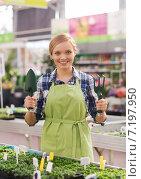 Купить «happy woman with gardening tools in greenhouse», фото № 7197950, снято 25 февраля 2015 г. (c) Syda Productions / Фотобанк Лори