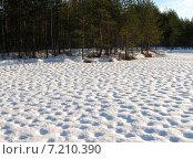 Купить «Лесное озеро в Карелии зимой», фото № 7210390, снято 19 января 2015 г. (c) Валерий Егоров / Фотобанк Лори