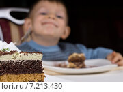 Купить «Мальчик ест шоколадный торт, кусочки десертов на тарелках», фото № 7213430, снято 19 октября 2014 г. (c) Вячеслав Николаенко / Фотобанк Лори