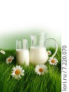 Купить «Молоко на зеленой траве с ромашками», фото № 7220070, снято 3 апреля 2014 г. (c) Иван Михайлов / Фотобанк Лори