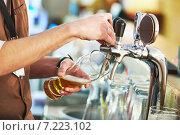 Купить «barman pouring beer», фото № 7223102, снято 24 февраля 2015 г. (c) Дмитрий Калиновский / Фотобанк Лори