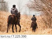 Купить «Конная полиция», фото № 7225390, снято 28 марта 2015 г. (c) Татьяна Назмутдинова / Фотобанк Лори