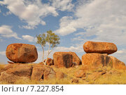 Купить «Australia - Outback, Northern Territory – The Devils Marbles Conservation Reserve located south of Tennant Creek area of Northern TerritoryAustralia, Outback, Northern Territory, The Devils Marbles Conservation Reserve located south of Tennant Creek», фото № 7227854, снято 22 июля 2018 г. (c) BE&W Photo / Фотобанк Лори