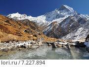 Купить «Nepal, Annapurna Conservation Area, Trek to Annapurna Base Camp in Nepal Himalaya», фото № 7227894, снято 20 июля 2019 г. (c) BE&W Photo / Фотобанк Лори