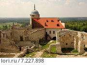 Купить «Poland, Janowiec, The Castle from XVI century», фото № 7227898, снято 22 апреля 2019 г. (c) BE&W Photo / Фотобанк Лори