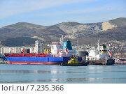 Купить «Торговые суда в Новороссийском морском порту», фото № 7235366, снято 6 апреля 2015 г. (c) Игорь Архипов / Фотобанк Лори
