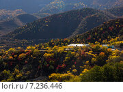 Осень. Стоковое фото, фотограф Максим Сиротинин / Фотобанк Лори