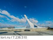 Олимпийский факел в Олимпийском парке, Сочи (2014 год). Редакционное фото, фотограф Руслан Нунаев / Фотобанк Лори