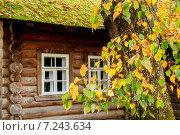Купить «Осенний деревенский пейзаж. Ветви дерева на фоне деревянного дома», фото № 7243634, снято 15 февраля 2019 г. (c) Зезелина Марина / Фотобанк Лори
