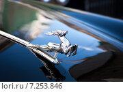"""Фрагмент автомобиля """"Волга"""" (2011 год). Редакционное фото, фотограф Игорь Леонов / Фотобанк Лори"""