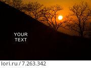 Солнце на закате. Стоковое фото, фотограф Арсен Васильковский / Фотобанк Лори