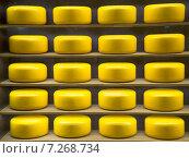 Купить «Круглые головки сыра на полках», фото № 7268734, снято 14 апреля 2015 г. (c) Виктор Карасев / Фотобанк Лори