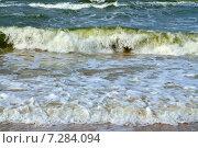 Купить «Балтийский прибой», фото № 7284094, снято 20 июля 2013 г. (c) Сергей Трофименко / Фотобанк Лори