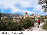 Купить «Мужчина идет по тропе, а ребенок  залез на скалу и ждет отца. Chiricahua National Monument, Аризона, США», фото № 7284258, снято 30 марта 2015 г. (c) Ирина Кожемякина / Фотобанк Лори