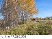 Купить «Осенний сельский пейзаж», эксклюзивное фото № 7295302, снято 13 октября 2013 г. (c) Елена Коромыслова / Фотобанк Лори