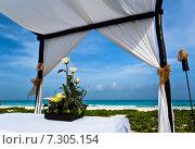 Букет цветов на столике под навесом на берегу океана. Стоковое фото, фотограф Борис Ветшев / Фотобанк Лори