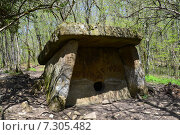 Купить «Дольмен в весеннем лесу», фото № 7305482, снято 24 апреля 2015 г. (c) Игорь Архипов / Фотобанк Лори
