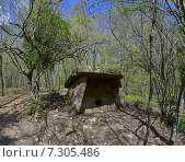 Купить «Дольмен в весеннем лесу», фото № 7305486, снято 10 декабря 2019 г. (c) Игорь Архипов / Фотобанк Лори