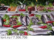 Прилавок с рыбой. Рыбный рынок Каракёй около Галатского моста в Стамбуле, Турция. Стоковое фото, фотограф Илюхина Наталья / Фотобанк Лори