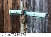 Купить «Старый замок на деревянной двери», фото № 7310774, снято 6 сентября 2014 г. (c) Любовь Назарова / Фотобанк Лори