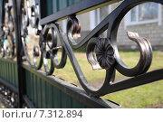 Купить «Кованый забор и металлопрофиль», фото № 7312894, снято 26 апреля 2015 г. (c) Айнур Шауэрман / Фотобанк Лори
