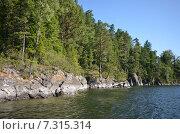 Купить «Вид на озеро Телецкое», фото № 7315314, снято 4 августа 2014 г. (c) Александр Карпенко / Фотобанк Лори