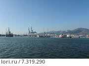 Купить «Грузовой порт в Новороссийске», фото № 7319290, снято 14 сентября 2014 г. (c) Free Wind / Фотобанк Лори