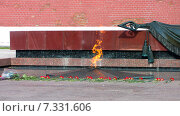 Купить «Вечный огонь в Александровском саду. Москва», фото № 7331606, снято 23 мая 2014 г. (c) Алексей Ларионов / Фотобанк Лори