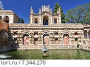 Купить «View of Real Alcazar's Galeria de Grutesco the Royal Palace Sevilla Spain dating back to the 9th century», фото № 7344270, снято 5 июня 2020 г. (c) BE&W Photo / Фотобанк Лори